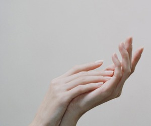 fragile, hands, and soft image