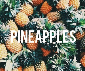 2015, pineapples, and mytext image