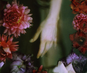 flowers and hand image