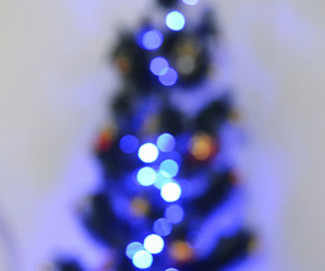 bokeh, flickr, and tree image