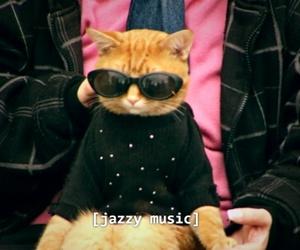 cat, garfield, and music image