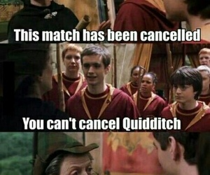 harry potter, quidditch, and funny image