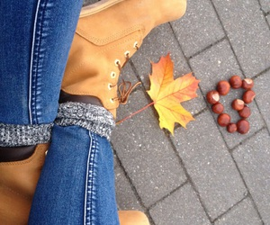 autum, Herbst, and hipster image