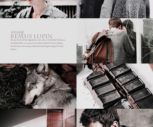 remus lupin, aesthetic, and marauders image