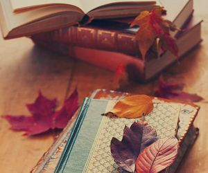 autumn, books, and leaves image