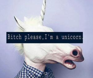 unicorn, bitch, and tumblr image