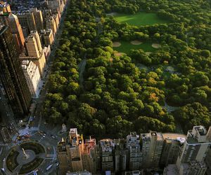 new york, Central Park, and nyc image