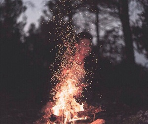 fire, night, and forest image