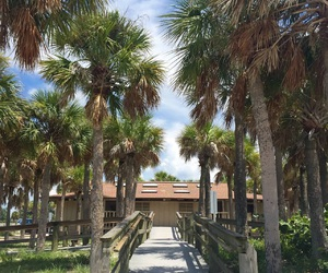 florida, vacation, and happy image