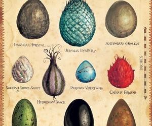 dragon, eggs, and fantasy image
