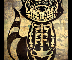 cat, skull, and illustration image