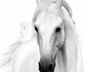 art, horse, and traditional art image