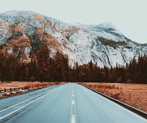 road, forest, and mountain image