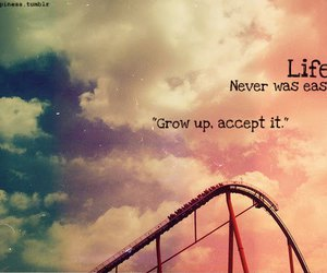life, quotes, and rollercoaster image