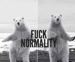 fuck normality image