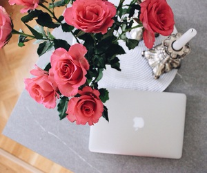 apple, flowers, and mac image