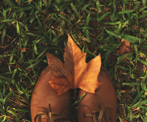 autumn, boots, and brown image