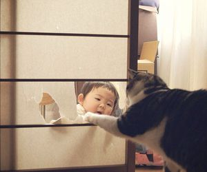 baby, japan, and cat image