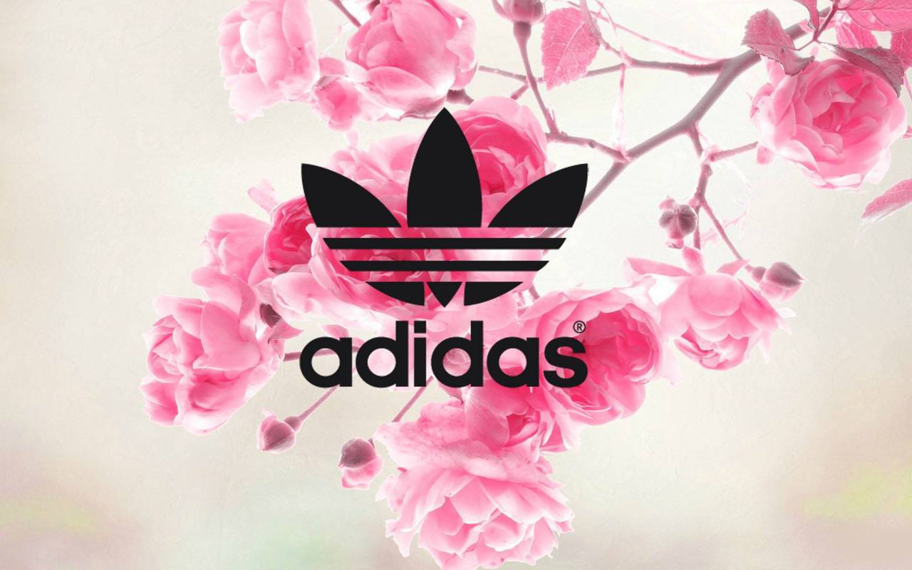 53 Images About Adidas On We Heart It See More About Adidas Shoes