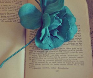blue, book, and cerulean image