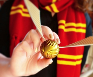 golden, gryffindor, and potter image