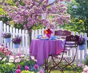 flowers, spring, and garden image