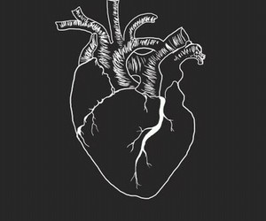 heart, art, and black and white image