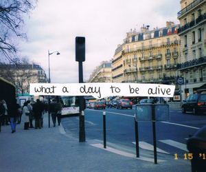 quote, text, and alive image