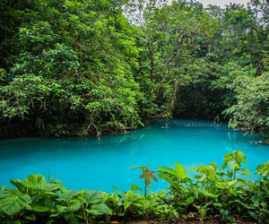 costa rica and nature image