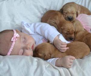 baby, puppy, and cute image
