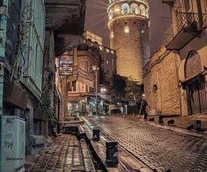 cat and istanbul image