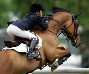 champion, horse, and jumping image
