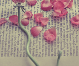 book, flowers, and photography image
