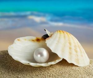 pearl, beach, and sea image