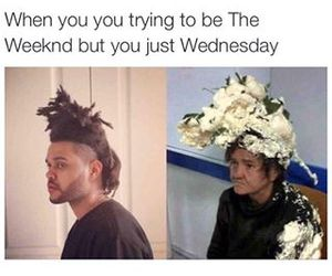 funny, the weeknd, and wednesday image