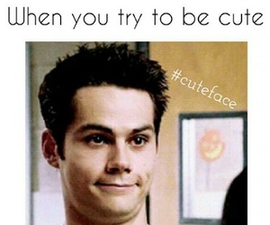 cute, funny, and teen wolf image