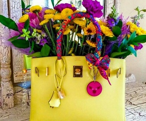 fashion, flowers, and hermes image