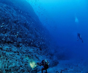 diving, dreams, and experience image