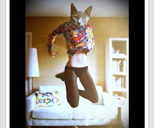 cat woman image