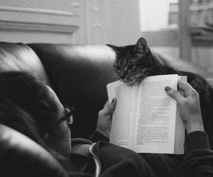 black and white, book, and cat image