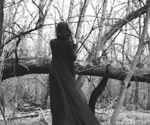 forest, gothic, and witch image