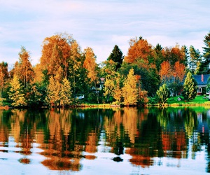 autumn, seasons, and colorful image