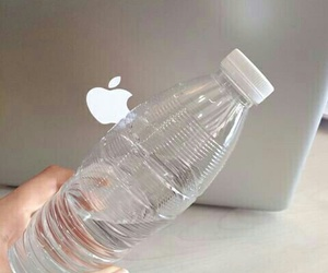 aesthetic, apple, and water image