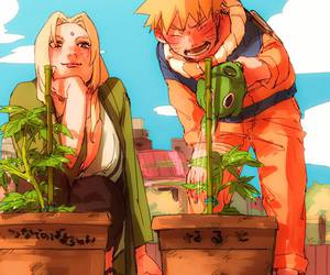 naruto, anime, and tsunade image