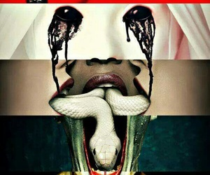asylum, freak show, and american horror story image