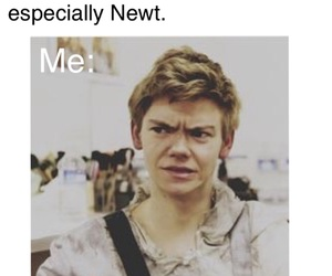 bae, newt, and the maze runner image
