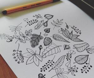 Image by Evelyn Illustrations