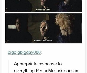 funny, the hunger games, and tumblr image