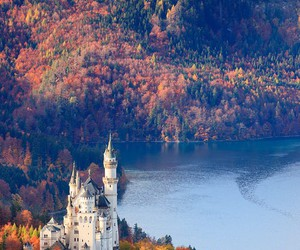 castle, autumn, and nature image