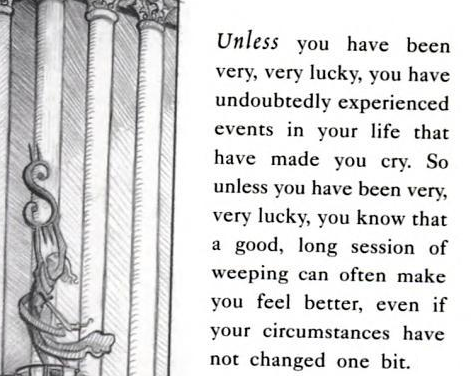Lemony Snicket The Bad Beginning A Sea Of Quotes